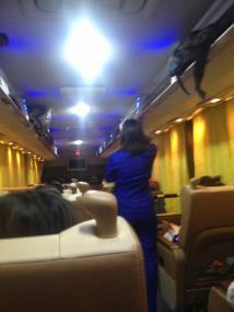 Bus Attendant